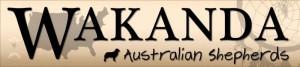 Logo_Wakanda
