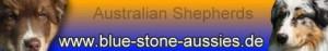 bluestone_banner
